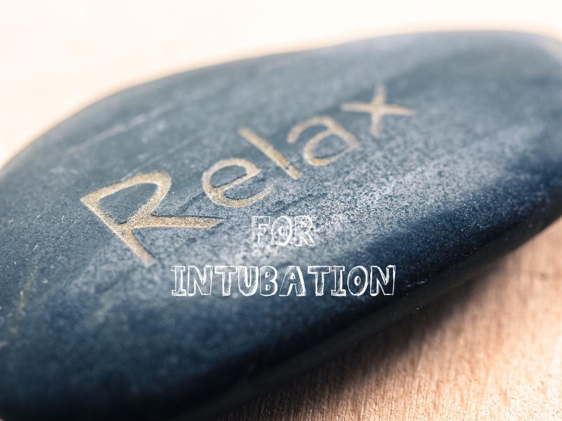 Intubation mit Relaxierung – Sux oderRoc?